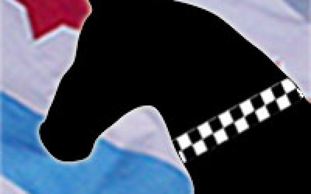 Police Equine   Elsie  | Star #DNA